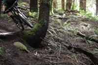 Evil Bikes en mode enduro