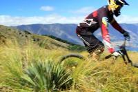 Through the lens, du gros vélo en NZ