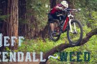 Jeff Kendall-Weed à Santa Cruz