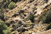 Andes Pacifico en vidéo