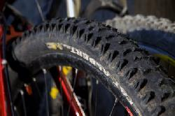 Schwalbe Fat Albert